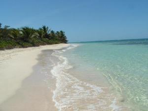 flamenco-beach